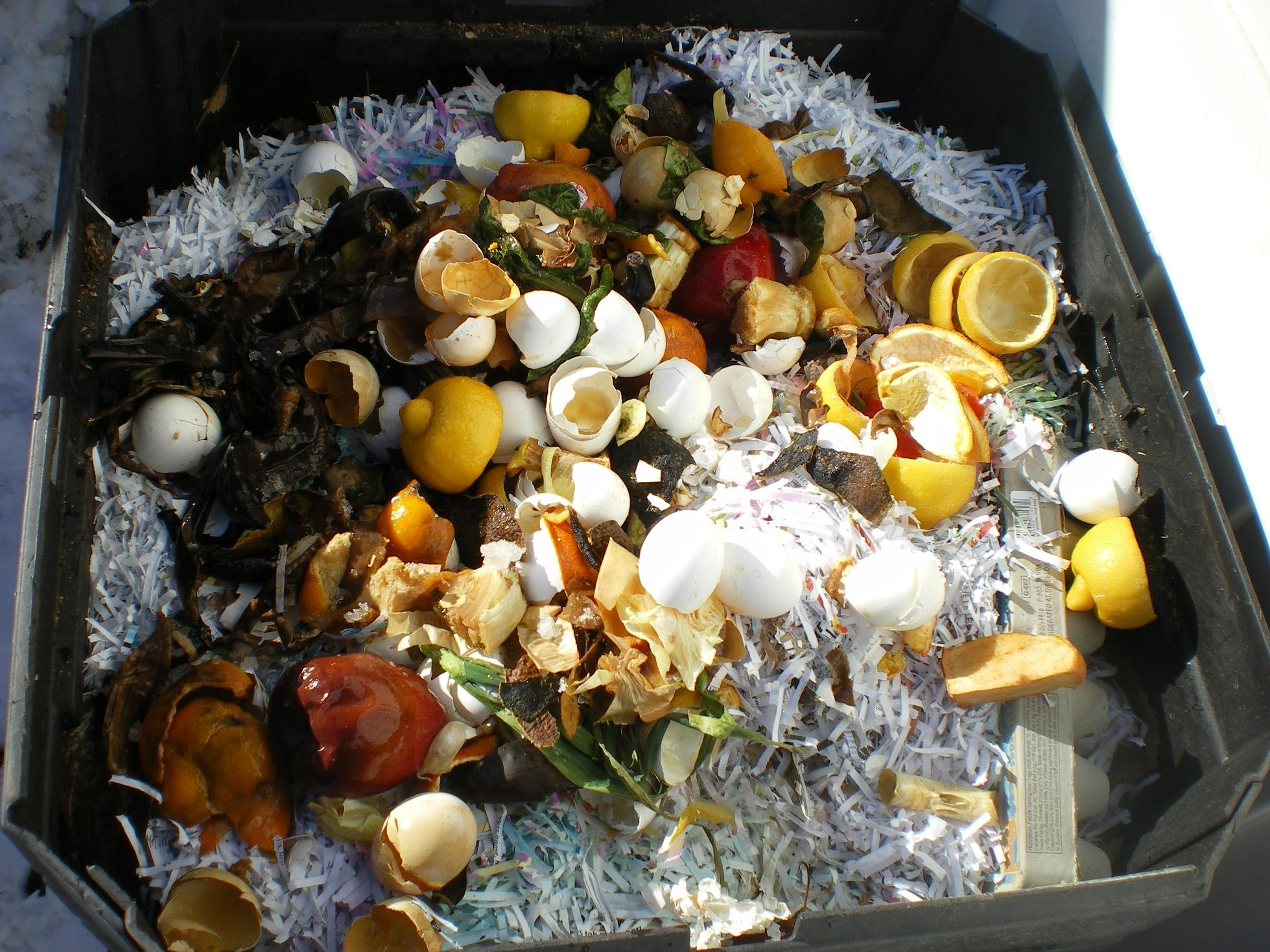 winter-compost