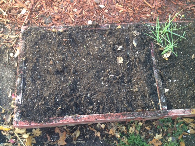 prepped-garden-box-for-winter